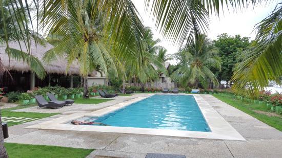 Dos Palmas Island Resort & Spa: Lap Pool at the Spa