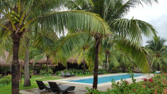 Dos Palmas Island Resort & Spa : Lap Pool at the Spa