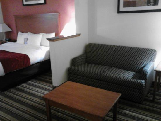 Comfort Suites: Room 113 - sitting area