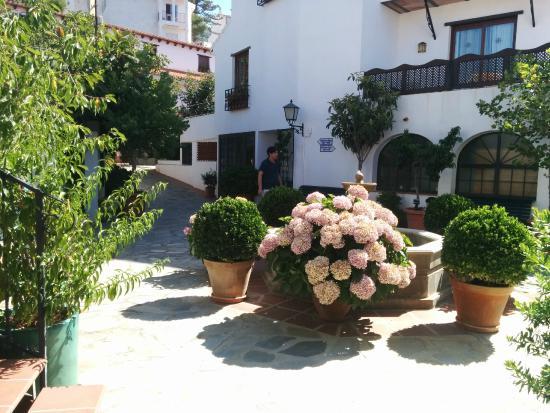 Fuentes y plantas por las zonas comúnes