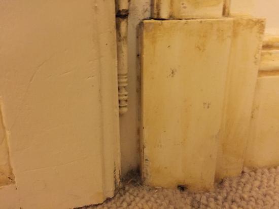 Chateau de Rochecotte: Mold (?), dirty carpet, chipped paint