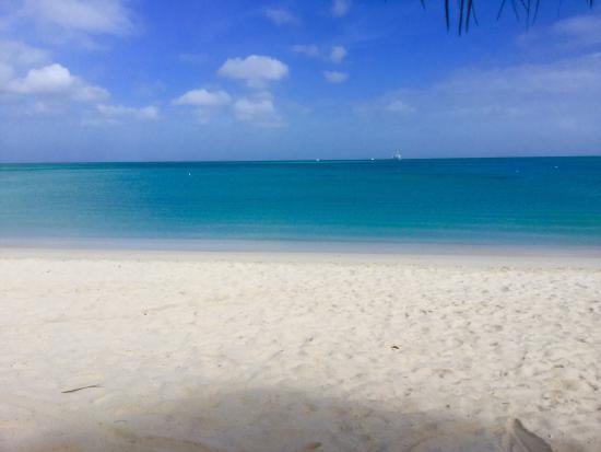 Holiday Inn Resort Aruba - Beach Resort & Casino: View from palapa #77.