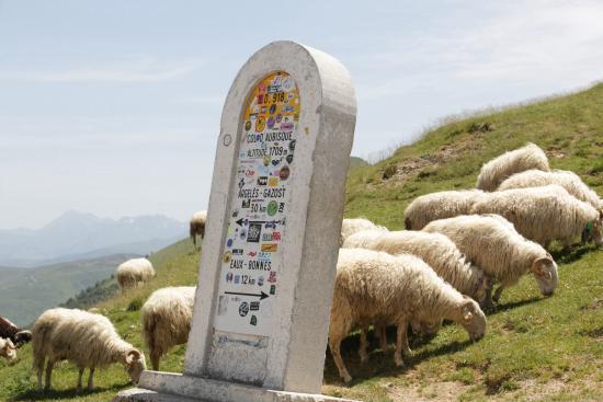 Pyrenees National Park (Parc National des Pyrenees): Bovenop de col.