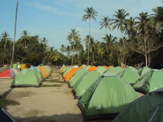Camping en cabo san juan picture of parque nacional for Camping el jardin san juan