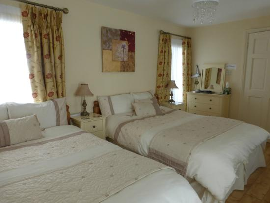 O'Driscoll's Bed & Breakfast : SPACIEUSE LUMINEUSE ET TRES PROPRE