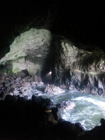 ฟลอเรนซ์, ออริกอน: Sea Lion Cave in Florence, OR South view