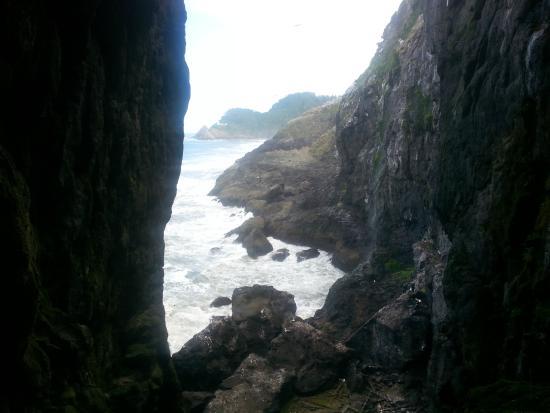 ฟลอเรนซ์, ออริกอน: Sea Lion Cave in Florence, OR  North view