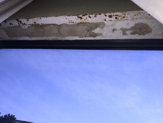 Comfort Inn Baton Rouge: Top of window in my room