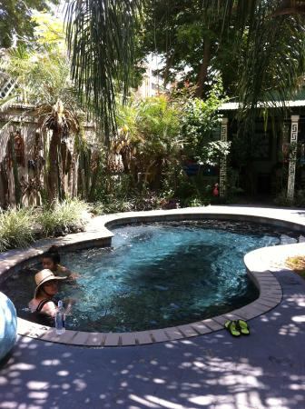 Lookout Inn of New Orleans: Pool area