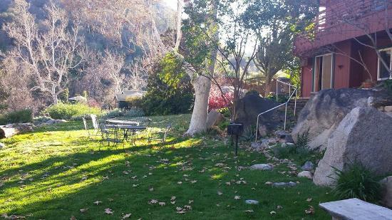 写真Buckeye Tree Lodge枚