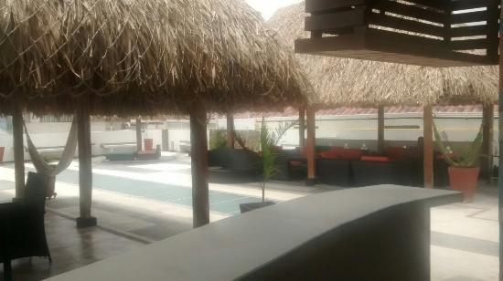 The Emerald Hostel Santa Marta: Cocina y terraza