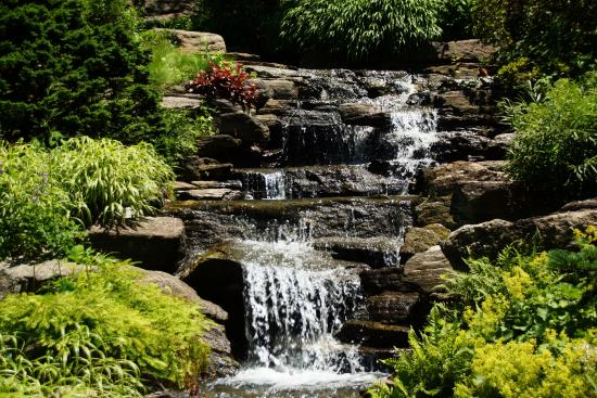 Botanical garden bronx picture of new york botanical - Bronx botanical garden free admission ...