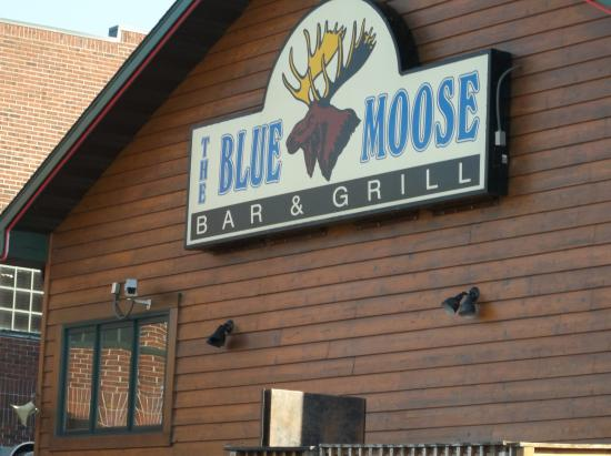 front of building picture of blue moose bar grill