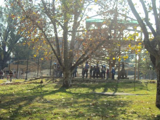 Entrada picture of el jardin de los ninos rosario for Bazzel el jardin de los secretos