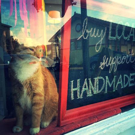 Front Royal, VA: Zari, the Official Shop Kitty