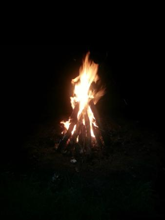 Magnolia Branch Wildlife Reserve: Bonfire
