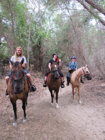‪Western Trails Horseback Riding - Private Rides‬