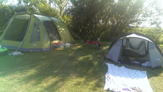 Norman's Bay Camping And Caravanning Club: tents