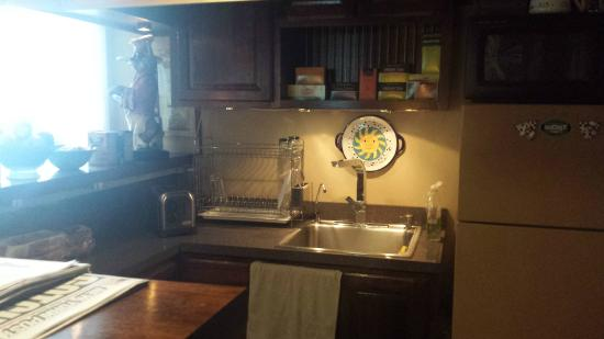 Village Green Bed and Breakfast: Kitchen