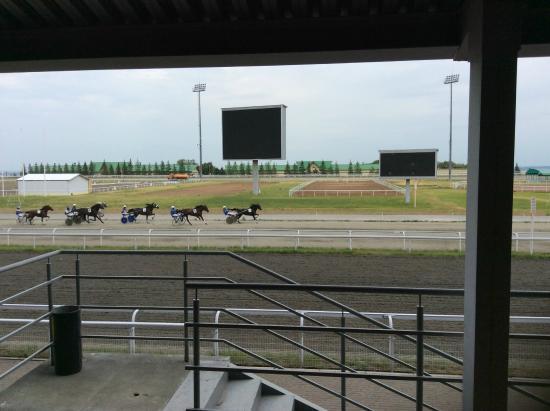 Racecourse Akbuzat
