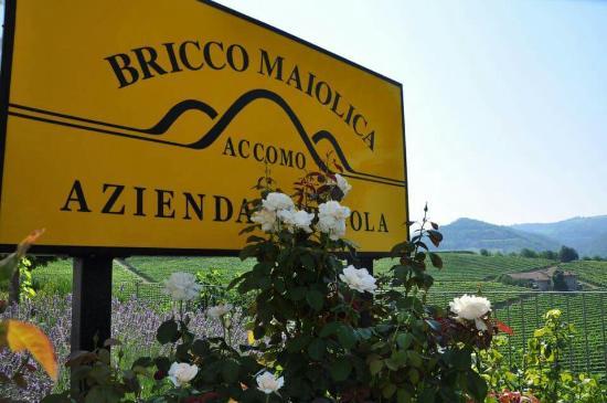 Azienda Agricola Bricco Maiolica
