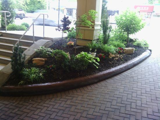 Best Western Queens Gold Coast : Great landscaping at hotel