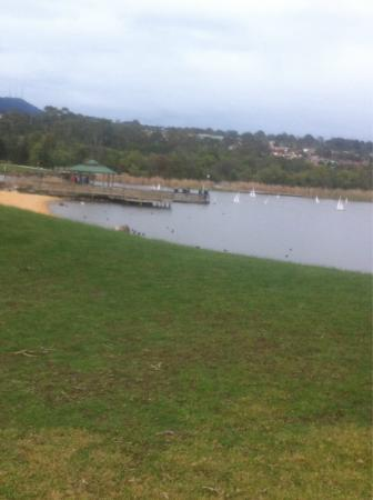 Lilydale Lake: Breath taking views 