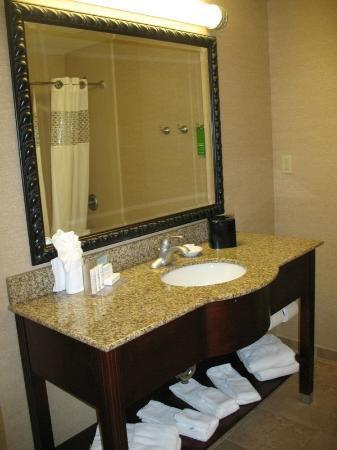 Hampton Inn South Kingstown - Newport Area: Bathroom vanity