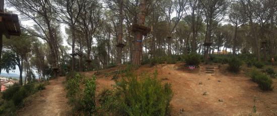 Vue de l'Arbre Aventura Park 2