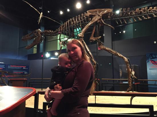 Burpee Museum of Natural History Photo