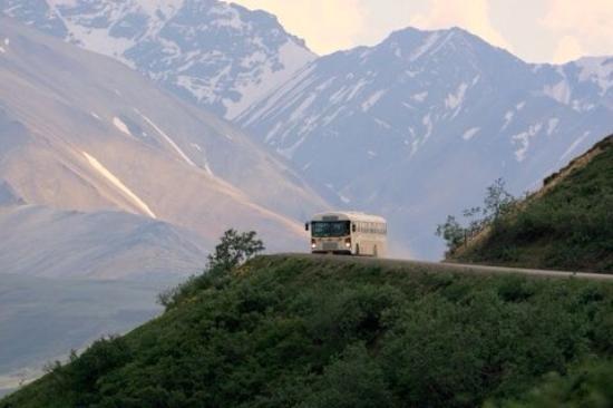 Camp Denali: photo0.jpg