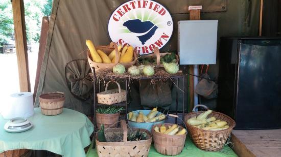 Enoree, Karolina Południowa: Simple Times Farm