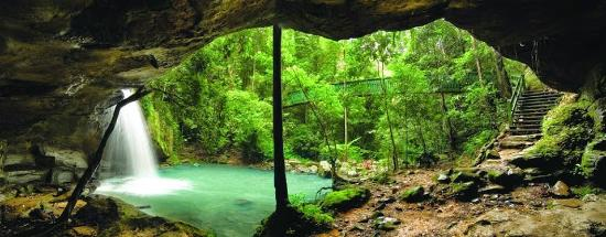 Sunshine Coast, Australia: Get back to nature