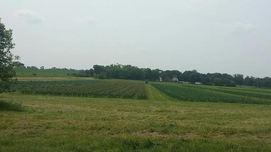 Caledonia, IL: The Farm