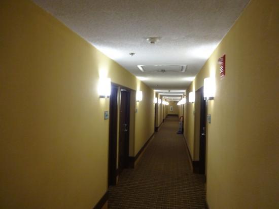 Quality Inn & Suites Peoria: hallway
