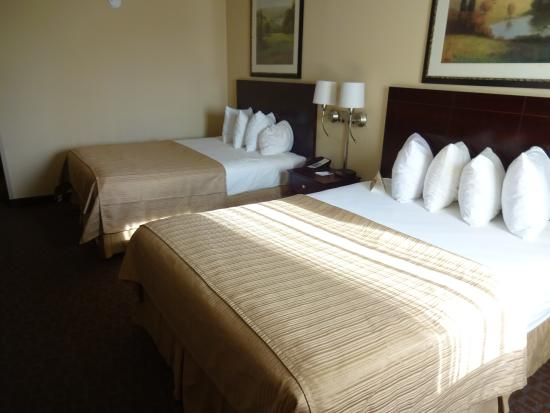 Quality Inn & Suites Peoria: two queen beds