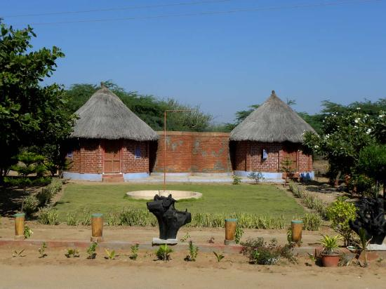 Kutch Fossil Park