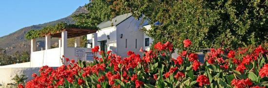 Riebeek-West, Zuid-Afrika: Wine Tasting Room