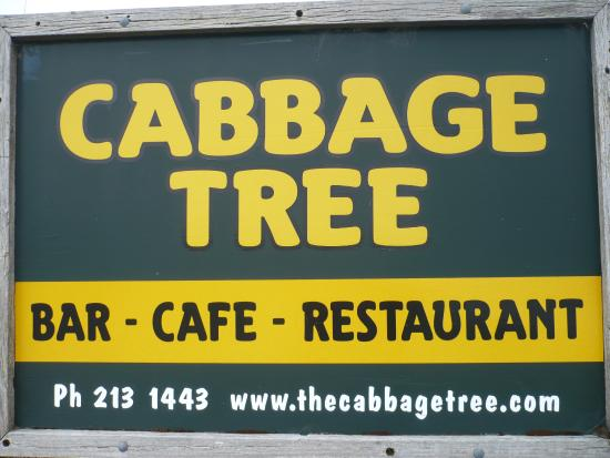 Cabbage Tree: Place to go