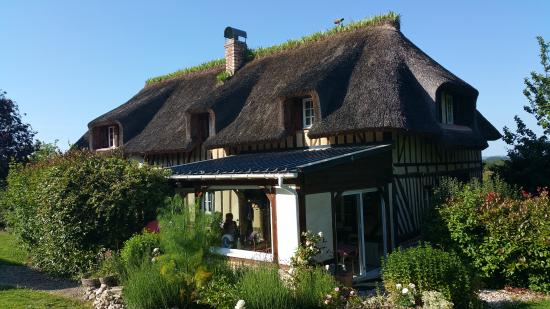Les Cigognes : Traditional thatch Normandy building - only 10 yrs old - delightful