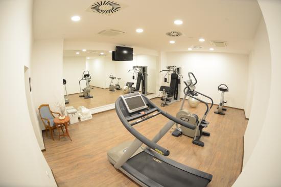 Panorama Zagreb Hotel: Fitness studio