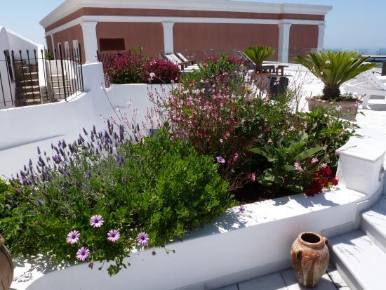Anteliz Suites: Pretty gardens in the hotel grounds