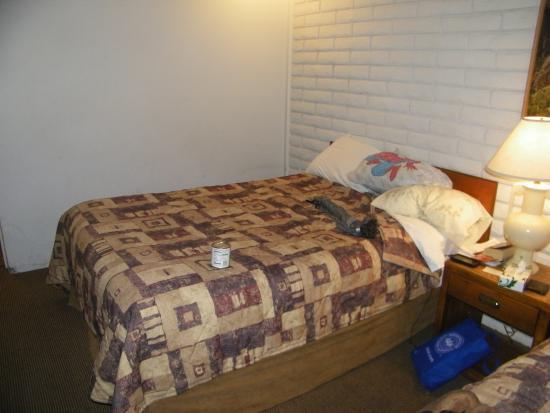 Country Inn : room