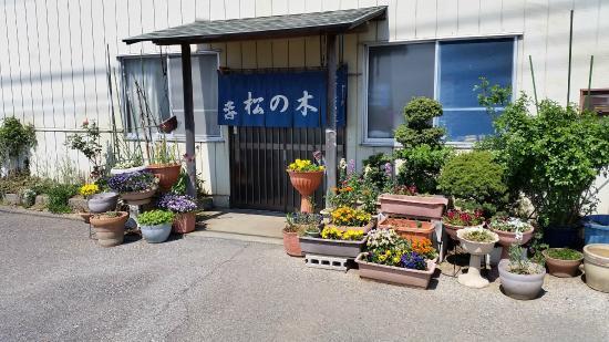 Matsunoki