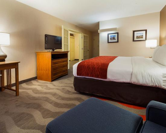 Comfort Inn & Suites Syracuse Airport : Flat Screen TV's