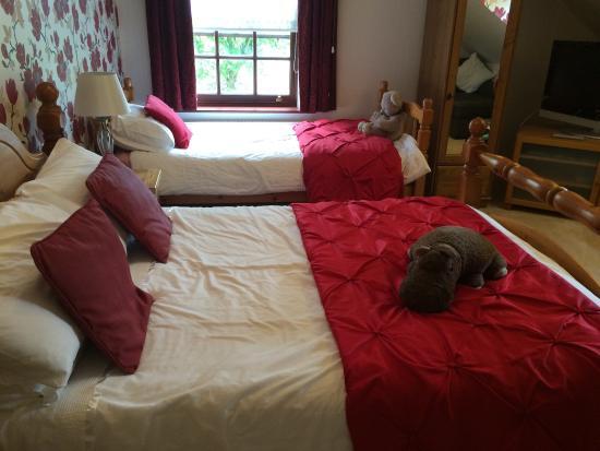 The Laurels Bed and Breakfast: photo2.jpg
