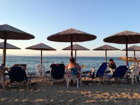 Aerides Beach Bar - Restaurant: Beach Bar