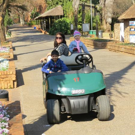 National Zoological Gardens of South Africa: Golf car hire is a must