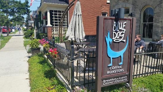 Blue Dog Coffee Roasters