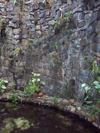 Hotel Cascata Das Pedras: cascada con peces, dentro del hotel